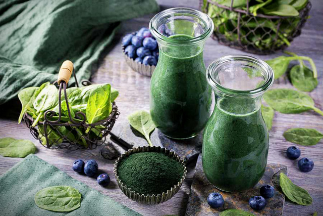 Chlorella Vulgaris Receipe
